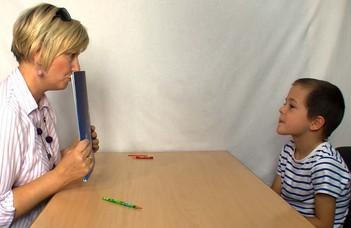 Jelentkezés a Sindelar–Zsoldos program 2. – Tanulási- és magatartási zavarok terápiája iskoláskorban c. pedagógus-továbbképzésre